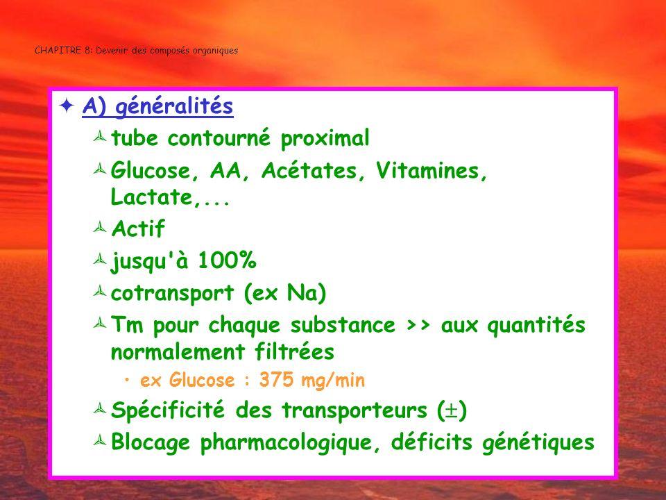 CHAPITRE 8: Devenir des composés organiques