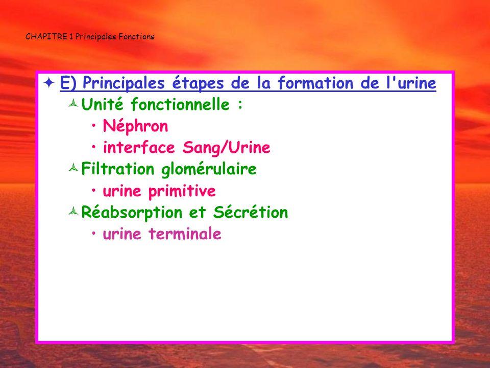CHAPITRE 1 Principales Fonctions