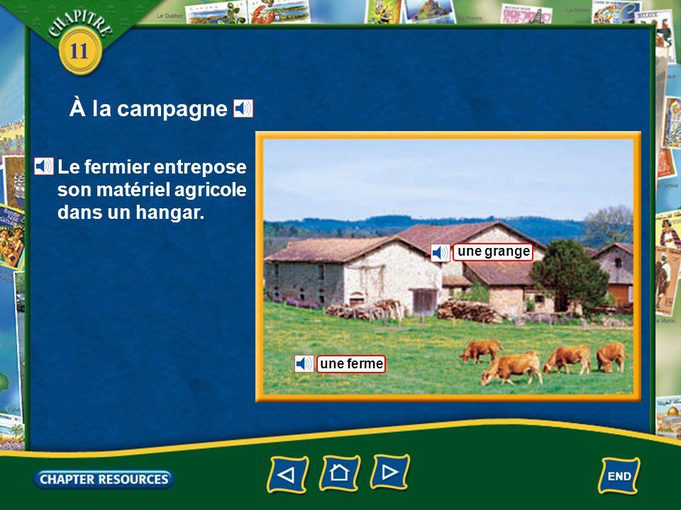 À la campagne Le fermier entrepose son matériel agricole dans un hangar. une grange une ferme