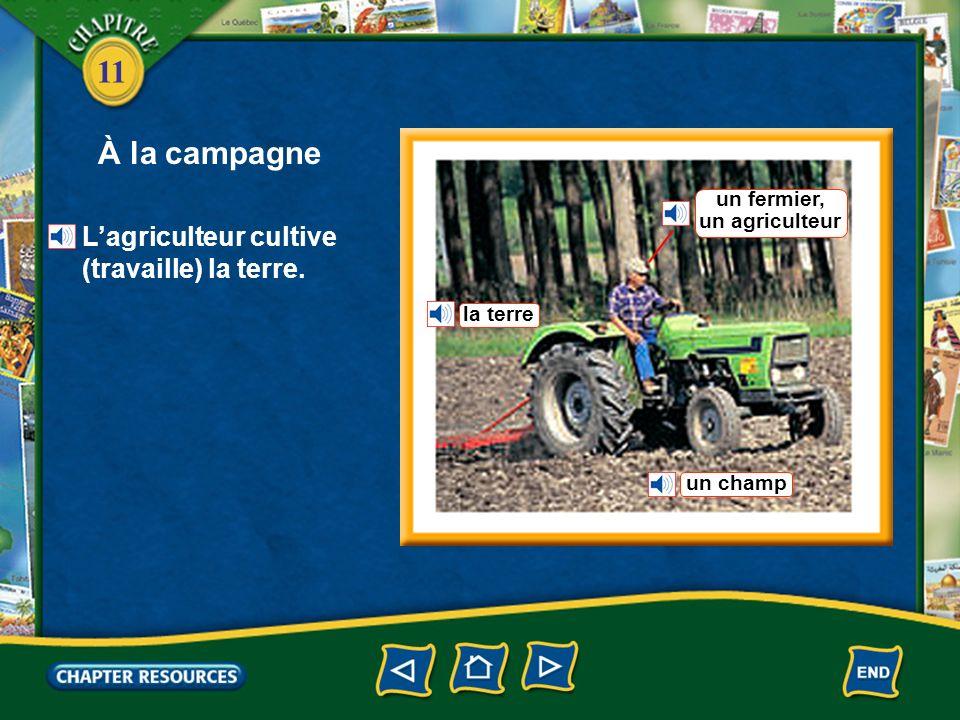À la campagne L'agriculteur cultive (travaille) la terre. un fermier,