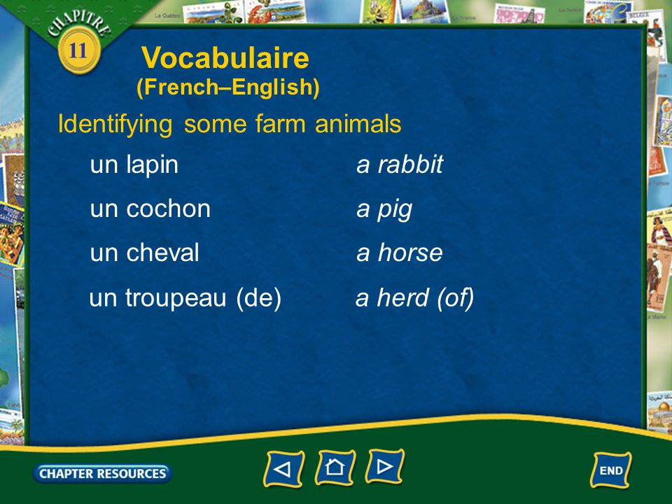 Vocabulaire Identifying some farm animals un lapin a rabbit un cochon