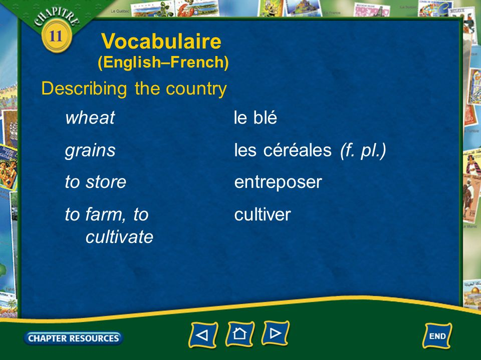 Vocabulaire Describing the country wheat le blé grains