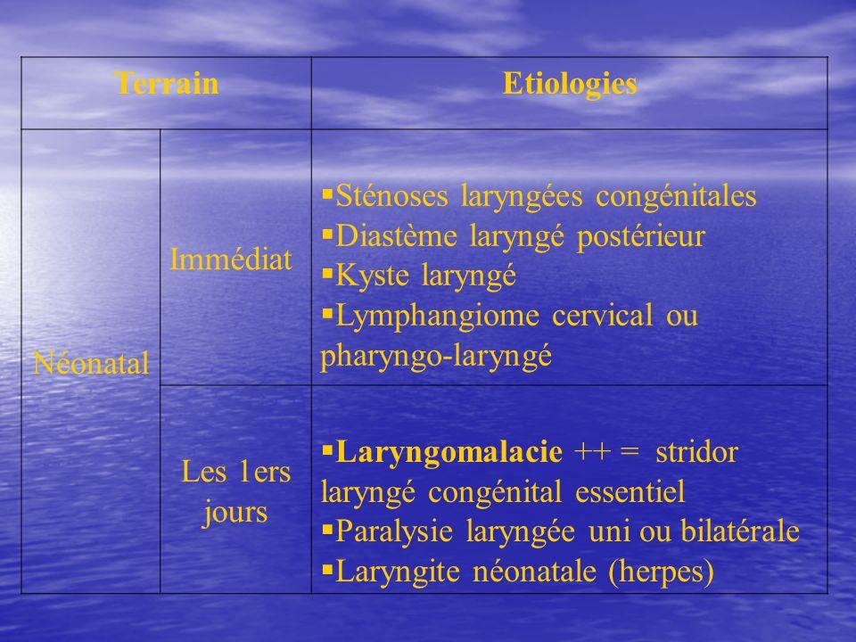 Terrain Etiologies. Néonatal. Immédiat. Sténoses laryngées congénitales. Diastème laryngé postérieur.