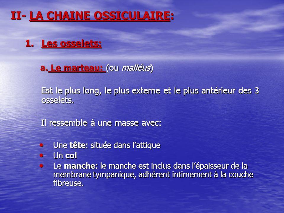 II- LA CHAINE OSSICULAIRE: