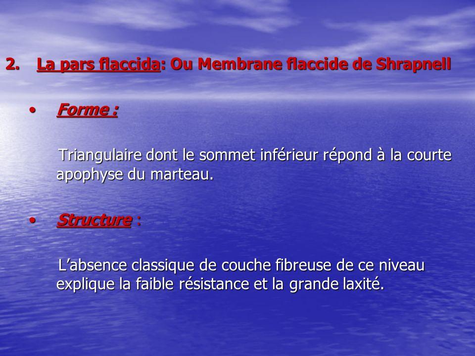 La pars flaccida: Ou Membrane flaccide de Shrapnell