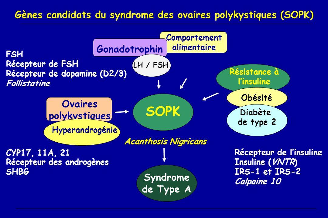 Gènes candidats du syndrome des ovaires polykystiques (SOPK)