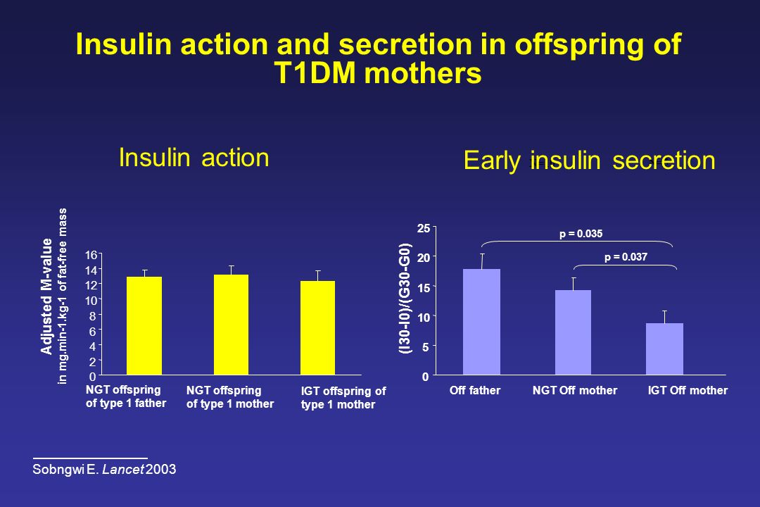 Insulin action and secretion in offspring of T1DM mothers