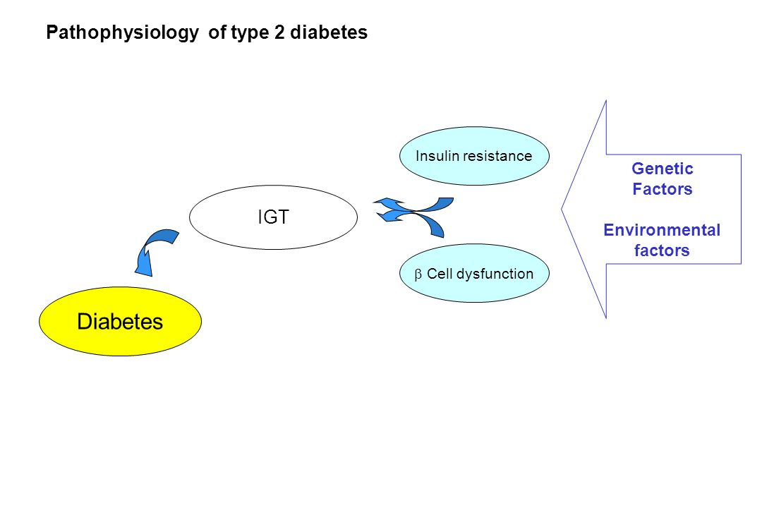 Diabetes Pathophysiology of type 2 diabetes IGT Genetic Factors