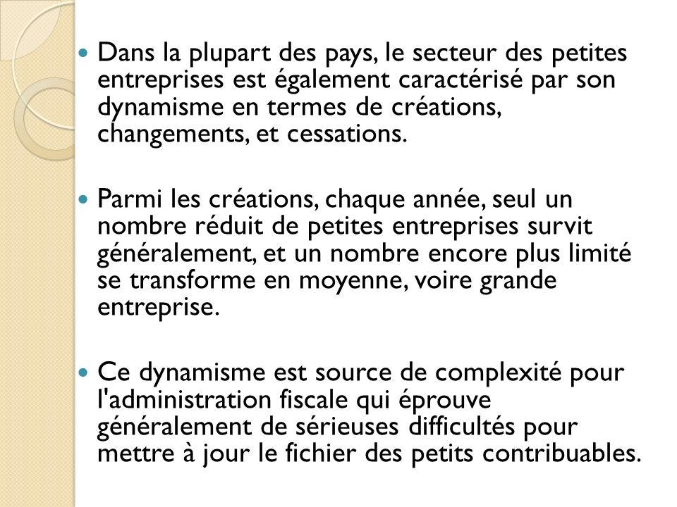 Dans la plupart des pays, le secteur des petites entreprises est également caractérisé par son dynamisme en termes de créations, changements, et cessations.