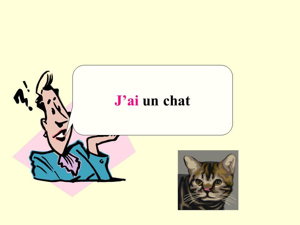 J'ai un chat