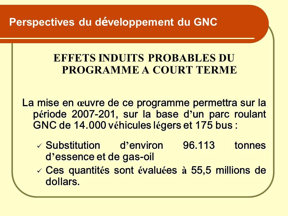 Perspectives du développement du GNC