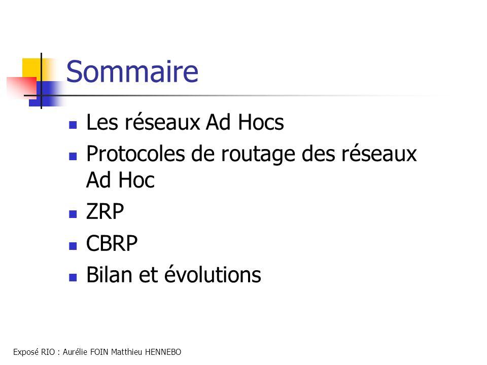 Sommaire Les réseaux Ad Hocs Protocoles de routage des réseaux Ad Hoc