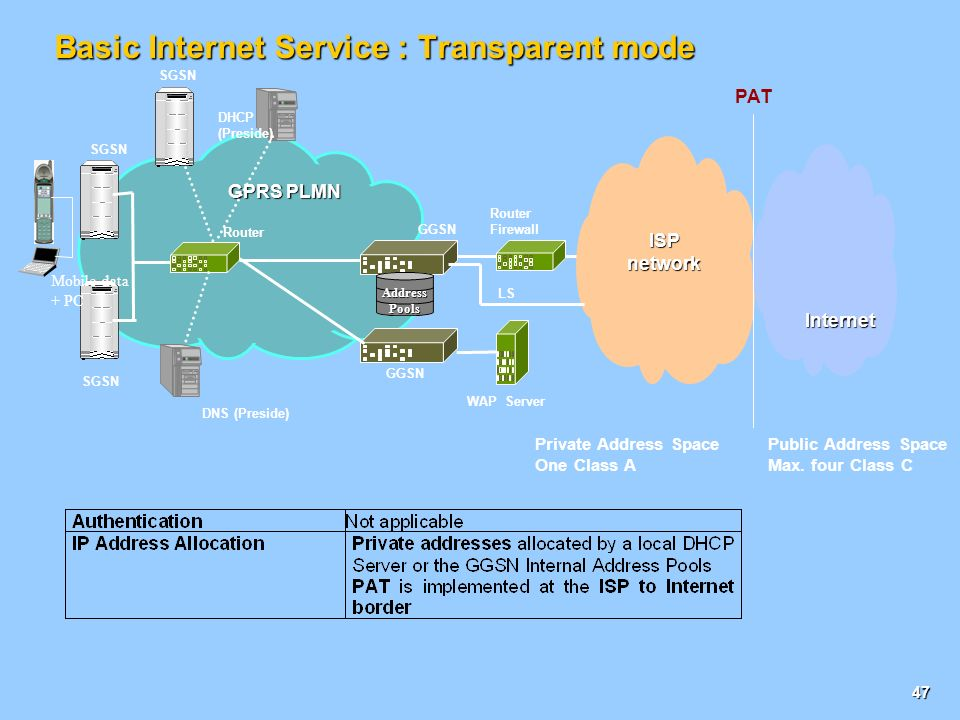 Basic Internet Service : Transparent mode