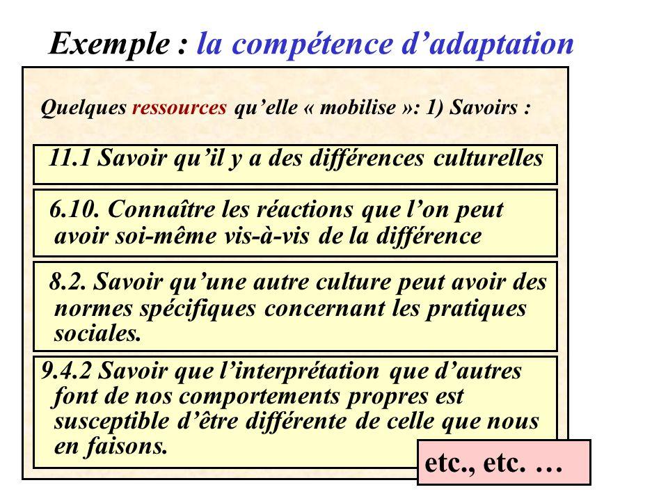 Exemple : la compétence d'adaptation
