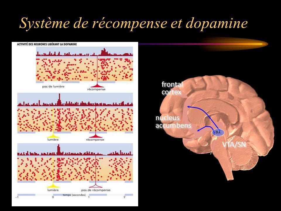 Système de récompense et dopamine