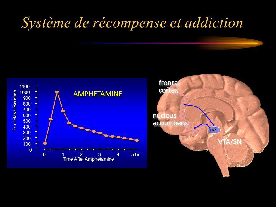 Système de récompense et addiction
