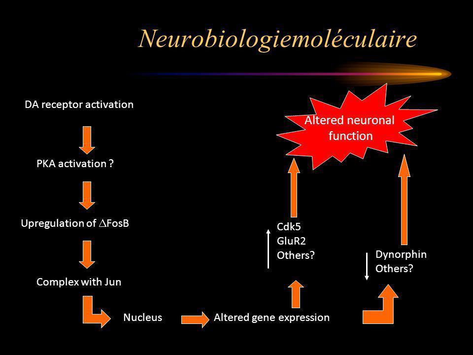 Neurobiologiemoléculaire