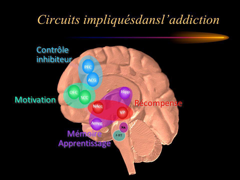Circuits impliquésdansl'addiction