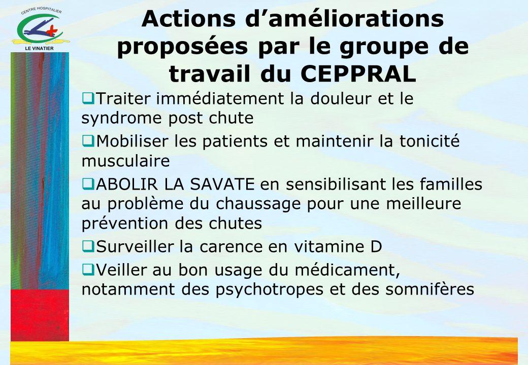 Actions d'améliorations proposées par le groupe de travail du CEPPRAL