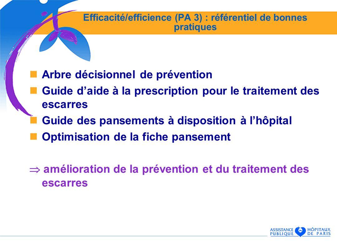 Efficacité/efficience (PA 3) : référentiel de bonnes pratiques