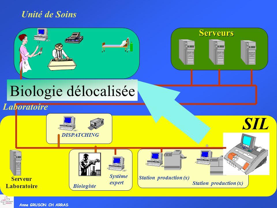 SIL Biologie délocalisée Unité de Soins Serveurs Laboratoire Serveur