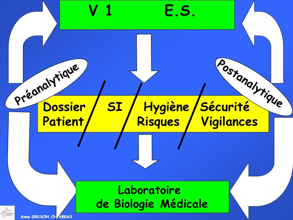 V 1 E.S. Dossier SI Hygiène Sécurité Patient Risques Vigilances