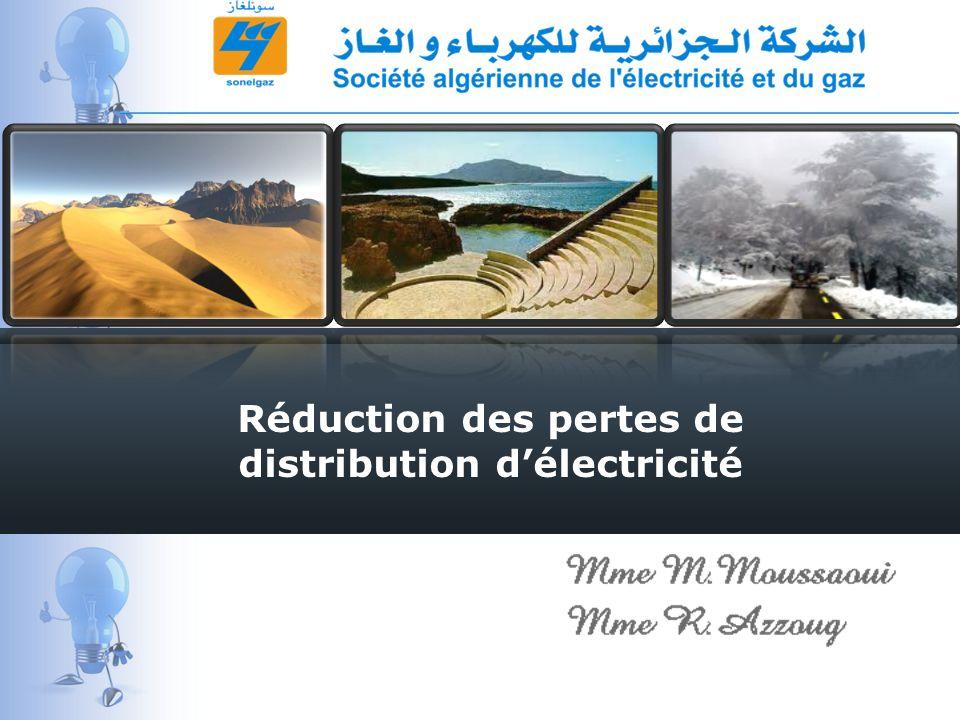 Réduction des pertes de distribution d'électricité