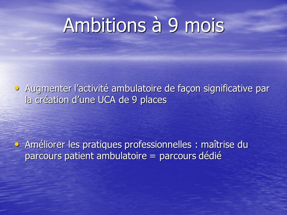 Ambitions à 9 moisAugmenter l'activité ambulatoire de façon significative par la création d'une UCA de 9 places.