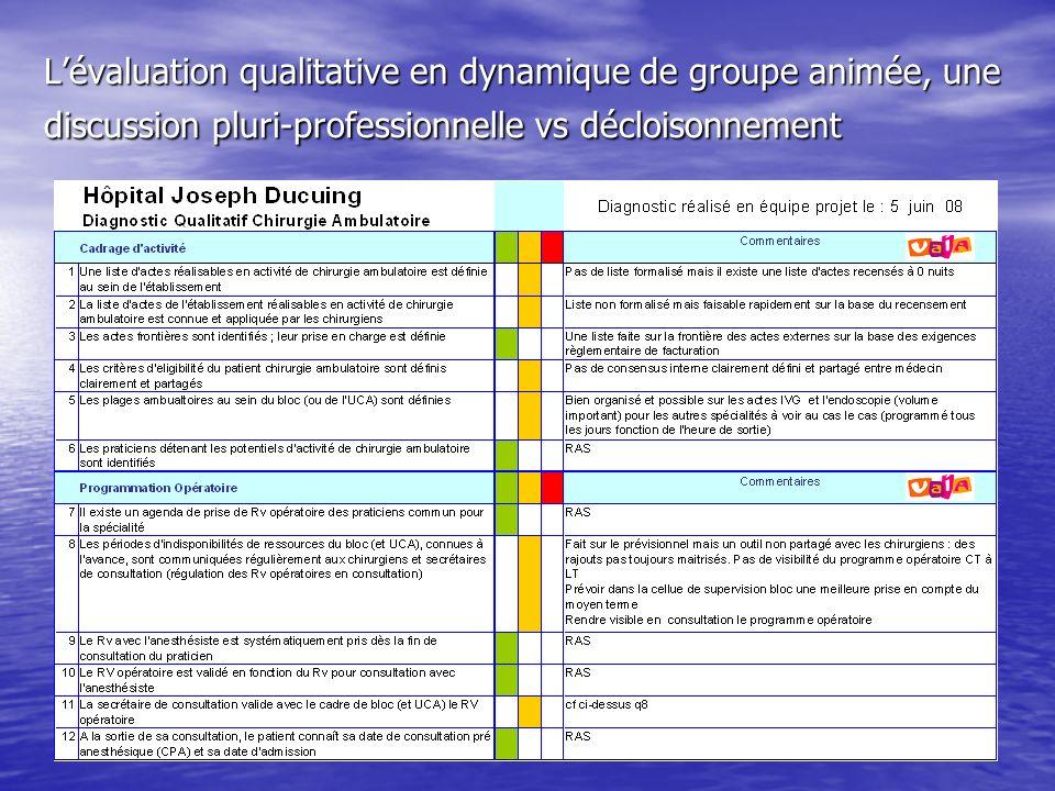 L'évaluation qualitative en dynamique de groupe animée, une discussion pluri-professionnelle vs décloisonnement