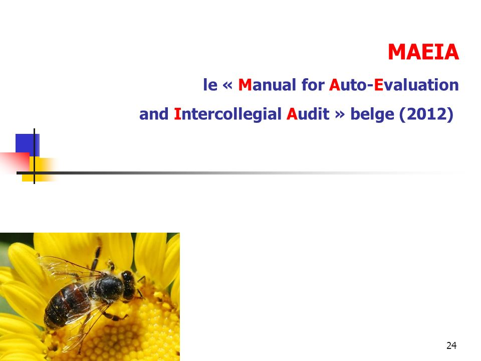 MAEIA le « Manual for Auto-Evaluation and Intercollegial Audit » belge (2012)