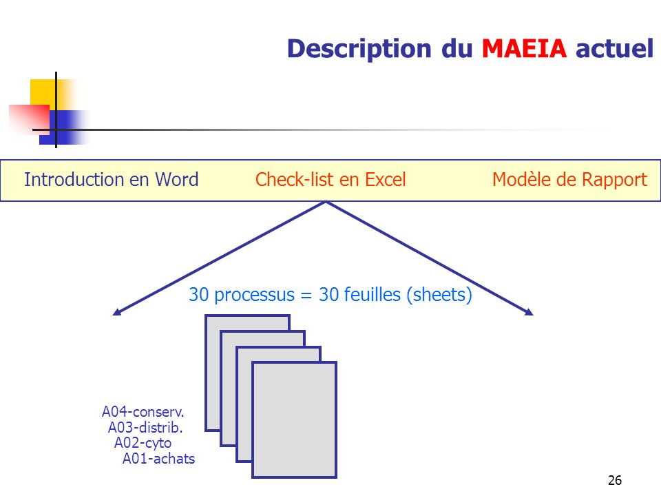 Description du MAEIA actuel