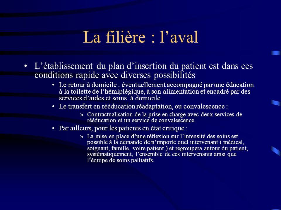 La filière : l'aval L'établissement du plan d'insertion du patient est dans ces conditions rapide avec diverses possibilités.