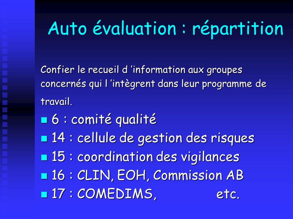 Auto évaluation : répartition