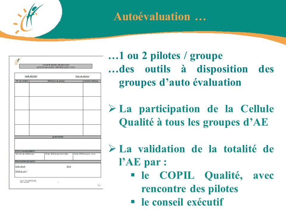 Autoévaluation … …1 ou 2 pilotes / groupe