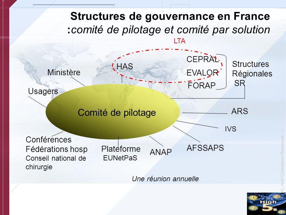Structures de gouvernance en France :comité de pilotage et comité par solution