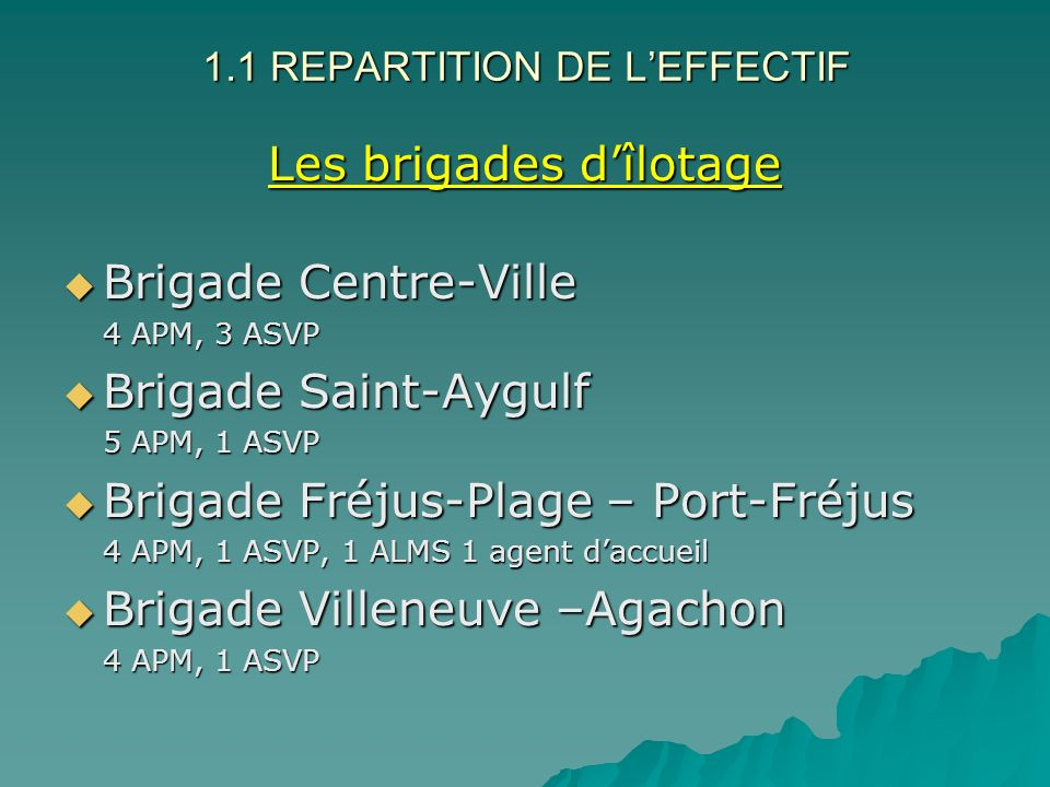 1.1 REPARTITION DE L'EFFECTIF