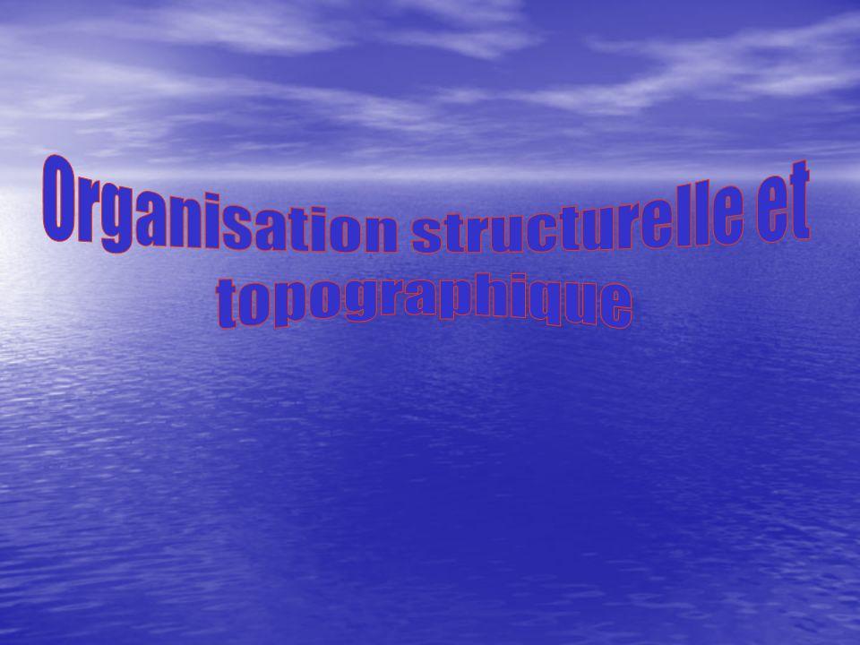 Organisation structurelle et