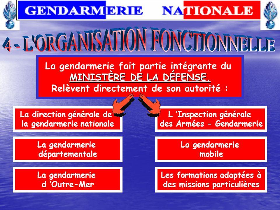 4 - L ORGANISATION FONCTIONNELLE