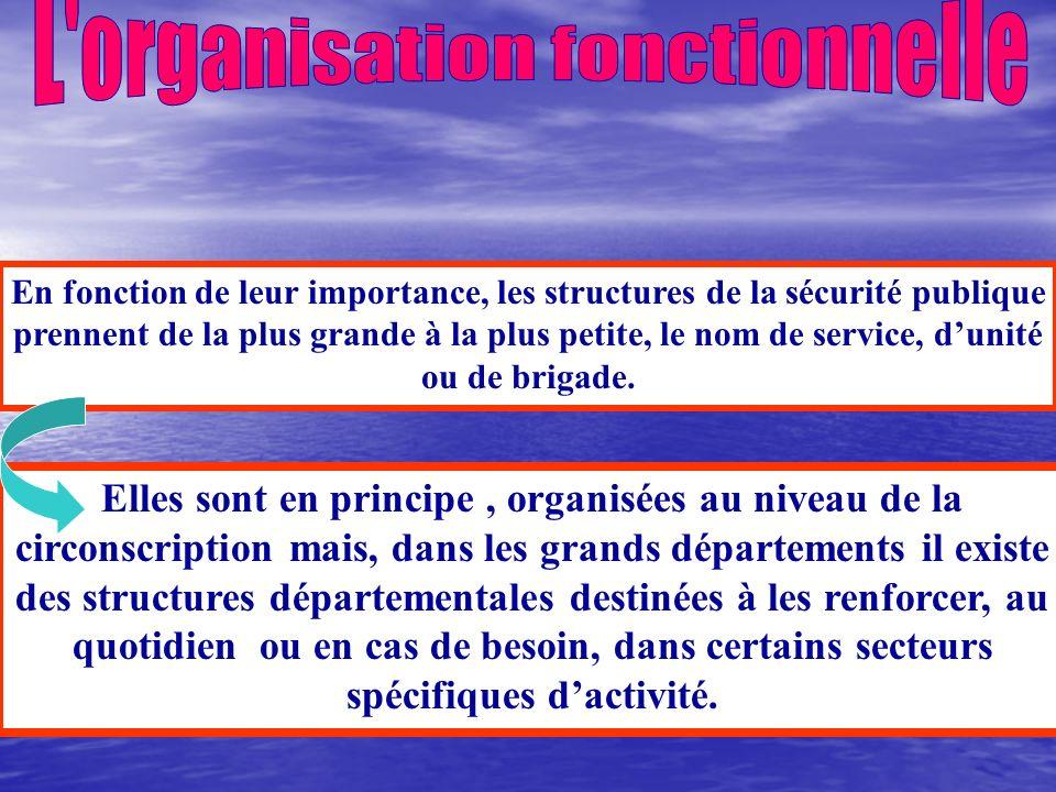 L organisation fonctionnelle