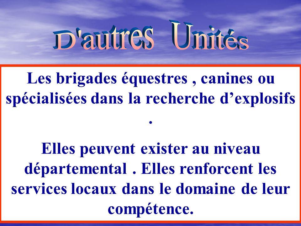 D autres Unités Les brigades équestres , canines ou spécialisées dans la recherche d'explosifs .