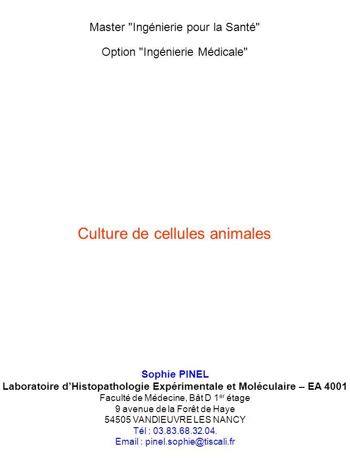Laboratoire d'Histopathologie Expérimentale et Moléculaire – EA 4001