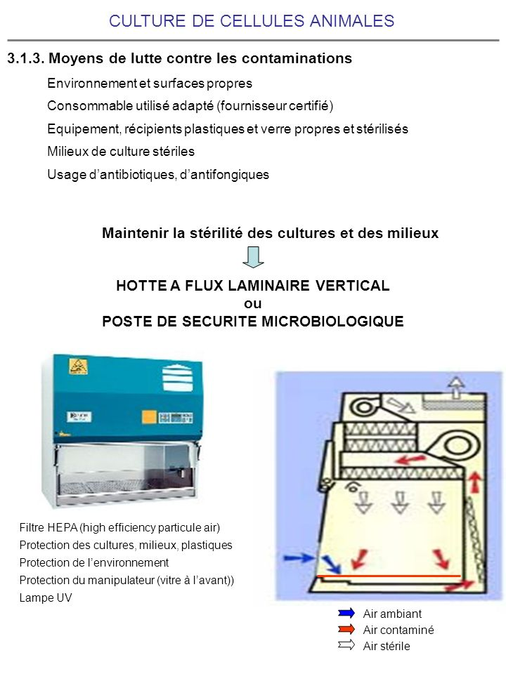 HOTTE A FLUX LAMINAIRE VERTICAL POSTE DE SECURITE MICROBIOLOGIQUE