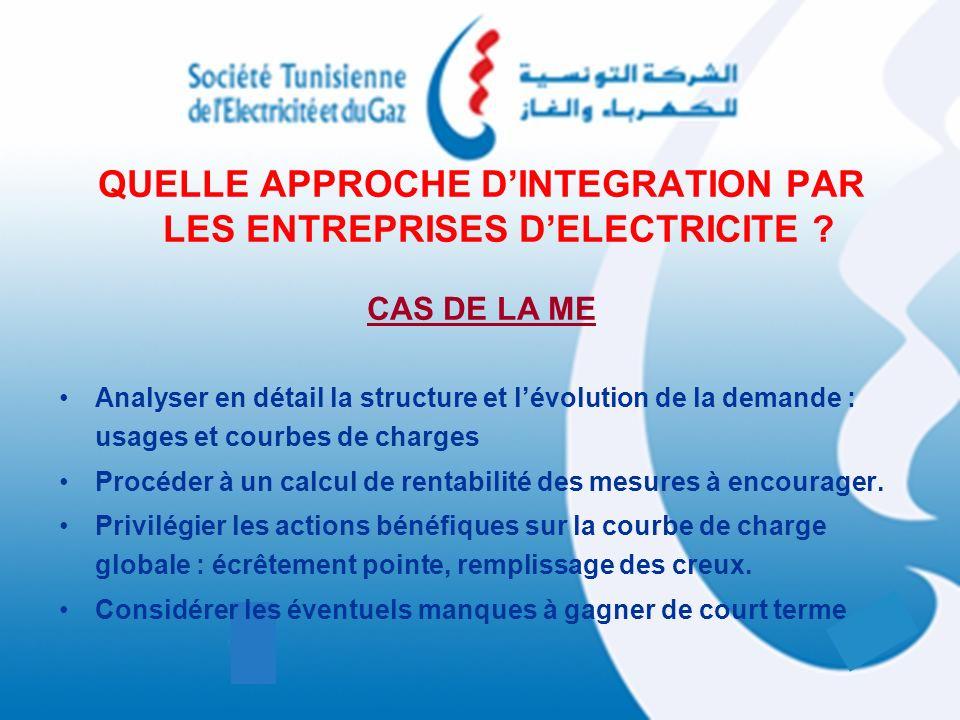 QUELLE APPROCHE D'INTEGRATION PAR LES ENTREPRISES D'ELECTRICITE
