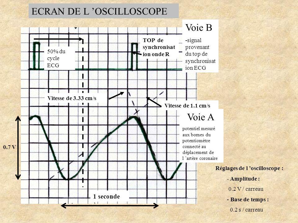 ECRAN DE L 'OSCILLOSCOPE
