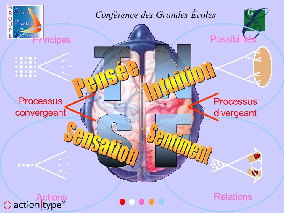 N T Pensée Intuition S F Sensation Sentiment Principes Possibilités