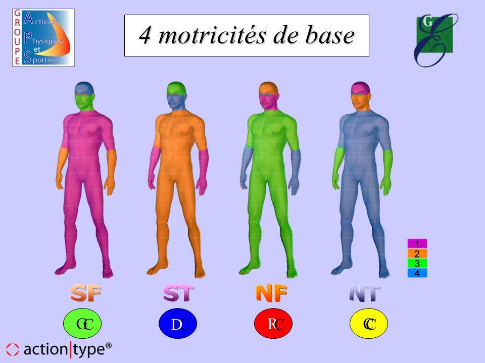 4 motricités de base SF ST NF NT G C C D R C C
