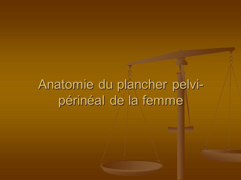 Anatomie du plancher pelvi-périnéal de la femme