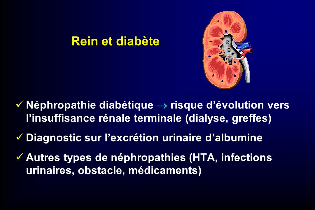 Rein et diabète Néphropathie diabétique  risque d'évolution vers l'insuffisance rénale terminale (dialyse, greffes)