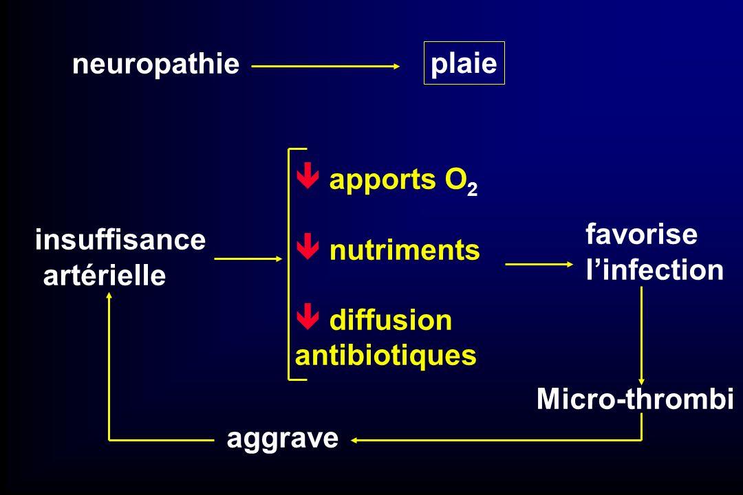 neuropathieplaie. insuffisance. artérielle.  apports O2.  nutriments.  diffusion. antibiotiques.