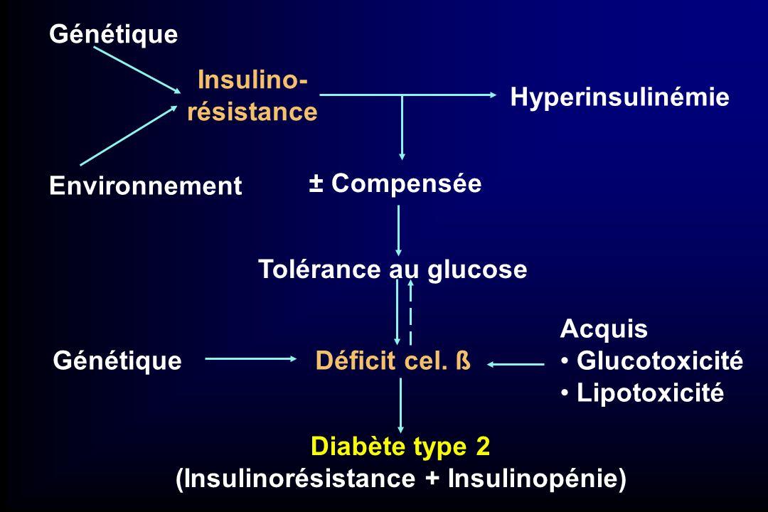 (Insulinorésistance + Insulinopénie)